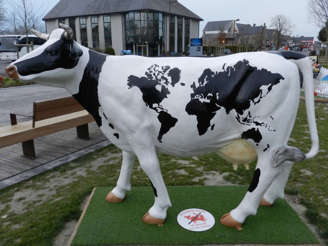 Au détour d'une vache…normande !