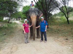 Les DecloSacàDos à la rencontre de l'éléphant