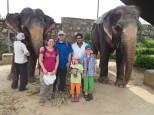 Notre visite chez les pachydermes. Merci Aamir
