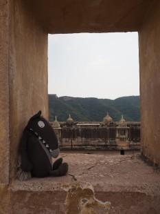 Tour du monde en famille - Inde Jaipur Fort d'Amber