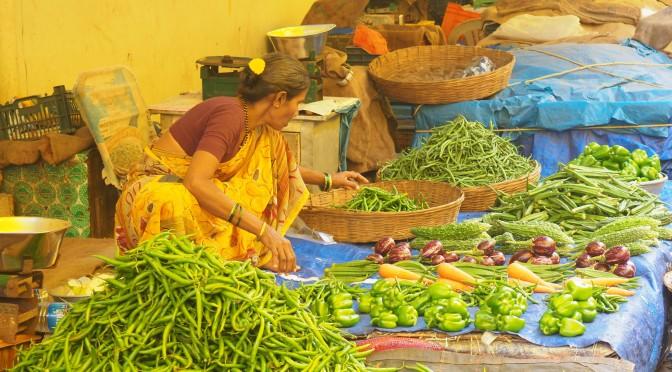 L'Inde, réponse de Jeanne aux CP St Radegonde