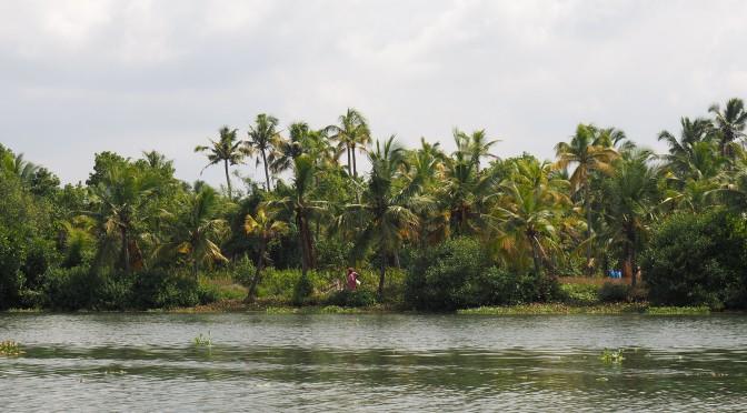 Kochi, les portes du Kérala