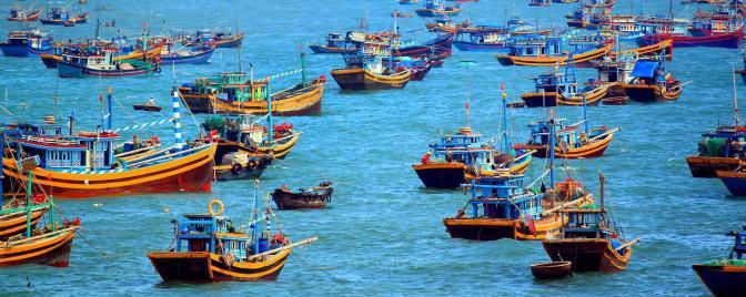 Vietnam : notre programme