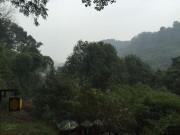 Parc autour du bouddha géant - LEshan