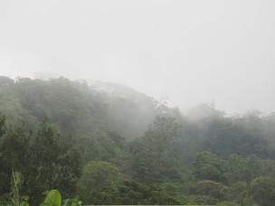Costa Rica : Monteverde