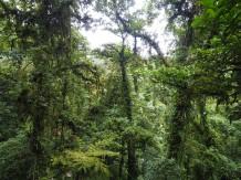 Tour du monde en famille - Costa Rica