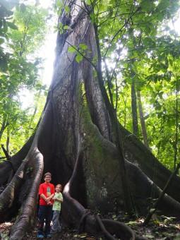Costa Rica : La Fortuna - Volcano Arenal